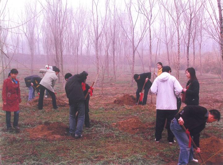 员工北郊草滩植树